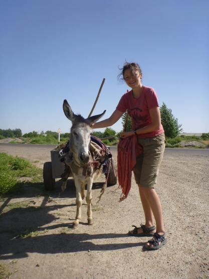 Ослик в одной из деревень оазиса в пустыне Кызылкум. (Фото автора)